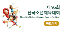 제46회 전국소년체육대회The 46th National junior Sports Festival