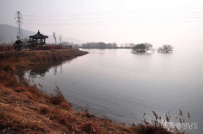 논산 탑정호의 겨울 단신