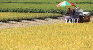 농업 보조금 제도 지원방식 개선 나선다