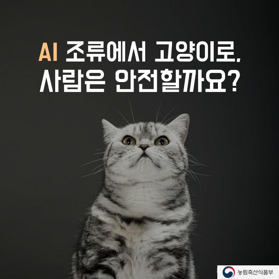 [농림축산식품부] AI 조류에서 고양이로, 사람은 안전할까요? 이미지 1