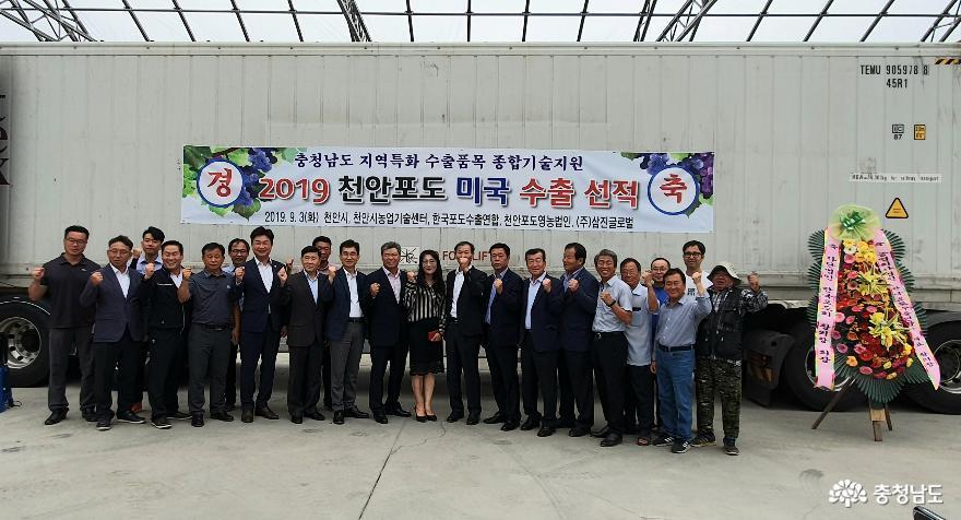 2019년 천안 거봉포도 수출 선적 이미지 1